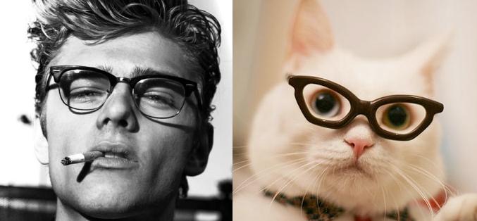 О людях и котах