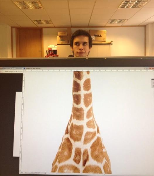 Desk safari
