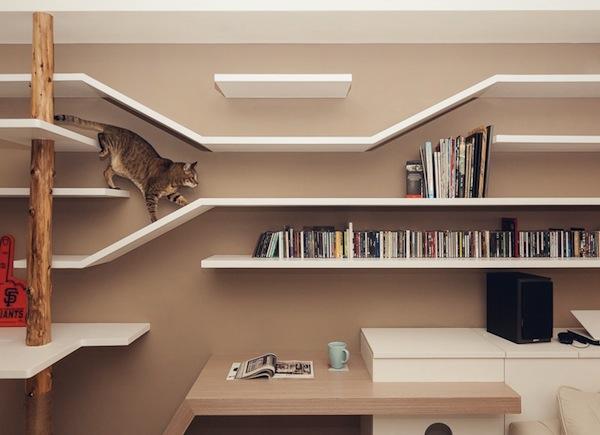 Идеальный кошкин дом