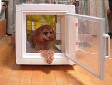 Холодильник для собак и кошек