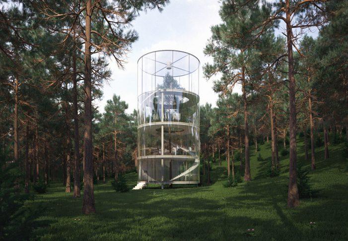 Прозрачный дом-дерево