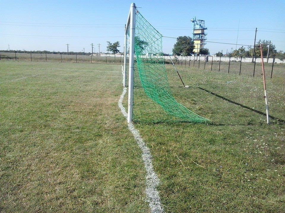 Пьяный садовник разрисовал футбольное поле