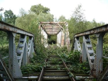 Заброшенный железнодорожный мост над Бяла Глухолака, Польша. (Фото: Jans Suchy)
