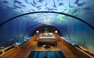 Можно наблюдать за подводной фауной не вставая с постели