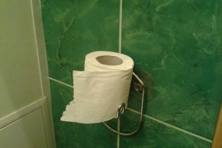 Скажи мне, как у тебя висит рулон туалетной бумаги, и я скажу кто ты