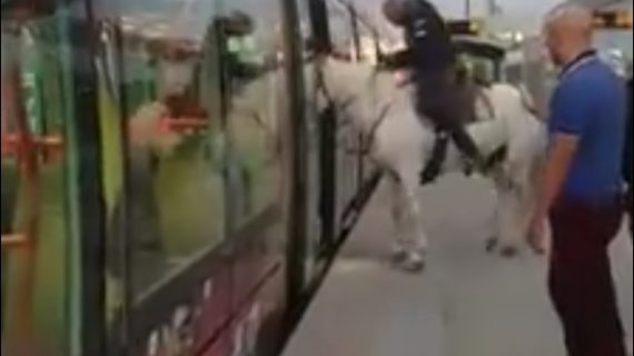 На лошади в трамвае…