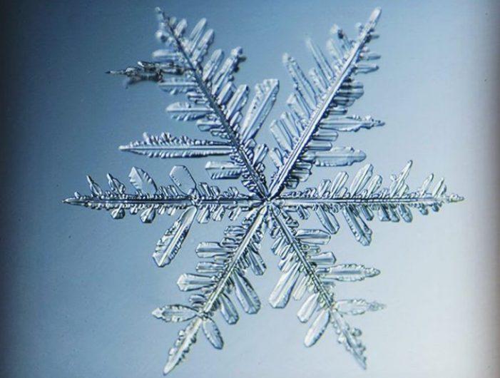 Завораживающие фотографии снежинок